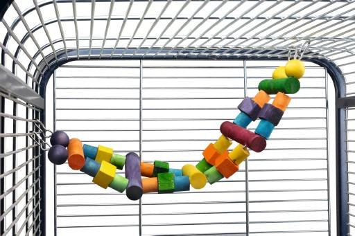 Papegaaien Ladder