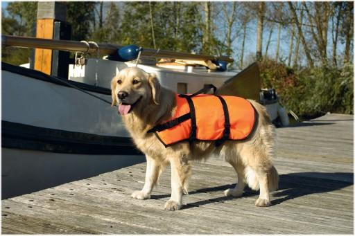 Zwemvest M voor de hond Per stuk